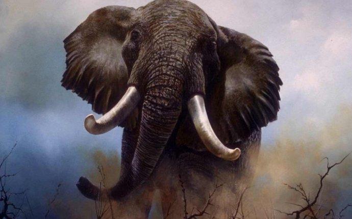 А сколько же весит самый большой слон в мире? - Просто интересный