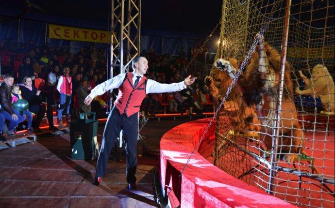 Цирк-шапито «Розовый Слон»