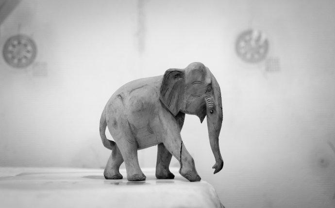 Фотография слон из раздела остальное №5922171 - фото.сайт