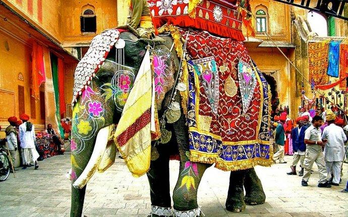 Интересно знать все на свете!: Слон индийский