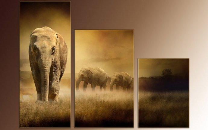 Картины слонов фото 74kupona.ru