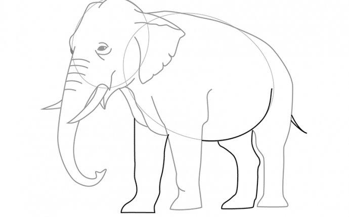 нарисовать слона карандашом поэтапно