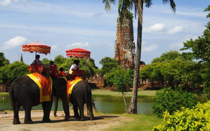 Про животных и людей: Таиланд. Слоны / Моя Планета