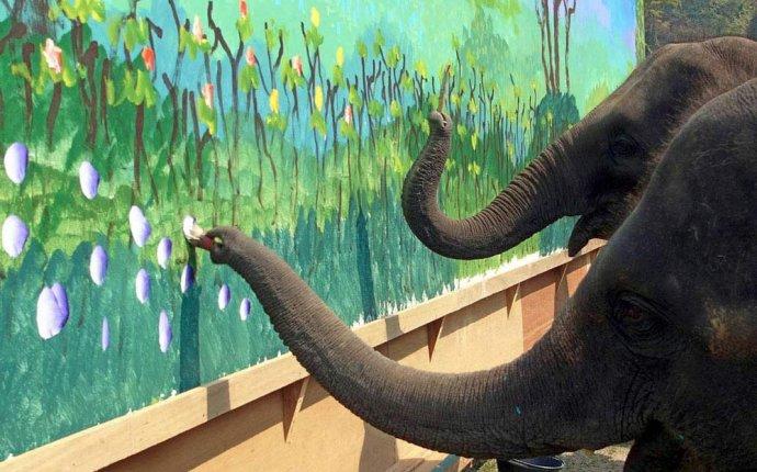 Рисунки собак, дельфина и слонов | Prikolisti.com