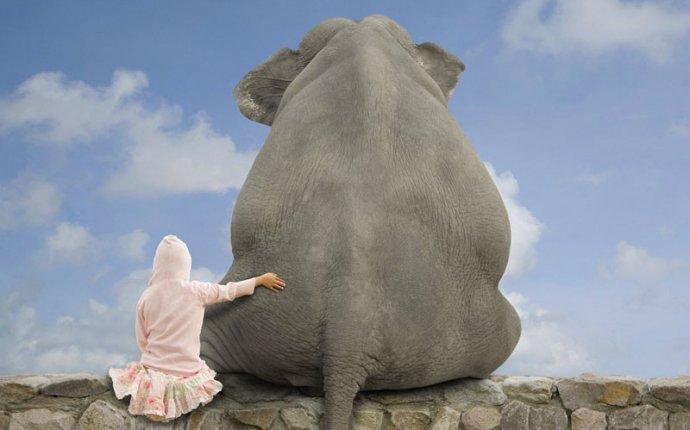 Слон и девочка - MirPosterov.ru