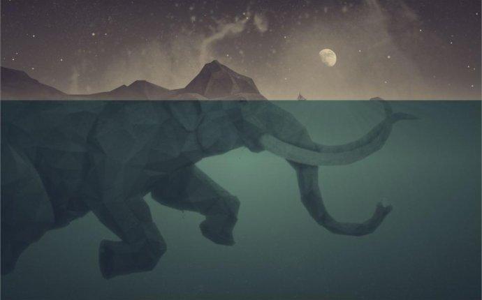 слон морской оптом - Купить оптом слон морской из Китая на AliExpress