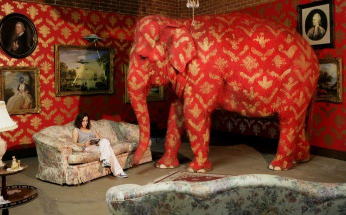 Слон в комнате: scinquisitor