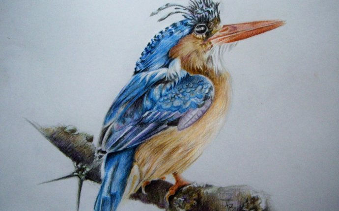 Тег: рисунок карандашом :: Дневник JuliaBadeeva — MY ART