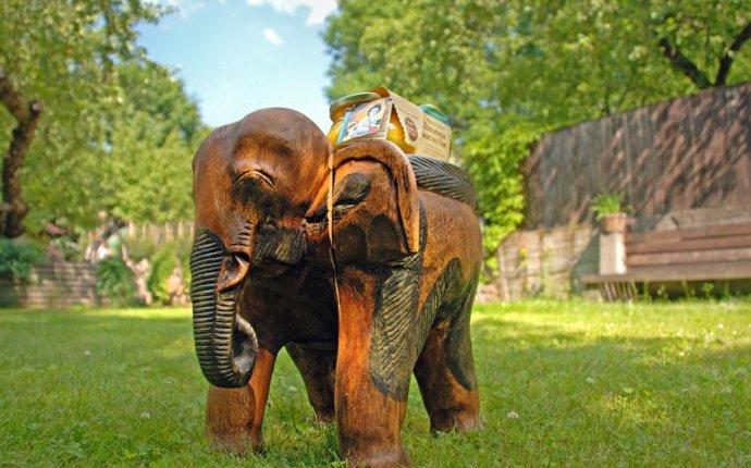 Вакансии компании Медведь и Слон